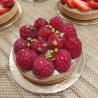 Tartelette framboises/pistache 4/5 parts